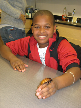 Middle school student holding a hissing cockroach.